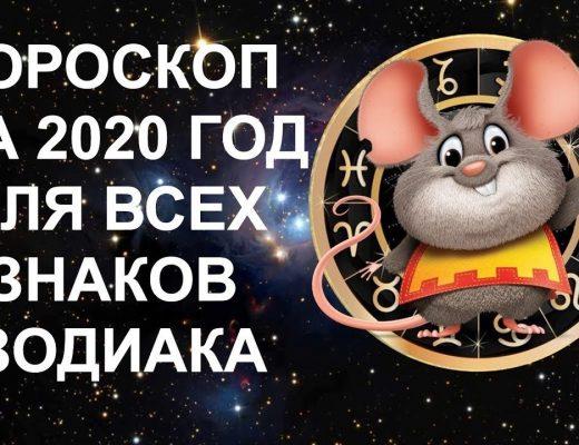 Знак зодиака 2020