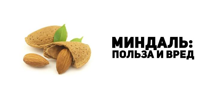 Миндальный орех для укрепления иммунитета: польза, приготовление молока.