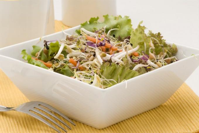 салат из ростков зерен